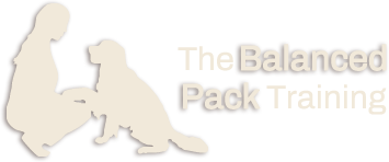 The Balanced Pack Dog Training - Serving Littleton, MA and surrounding areas